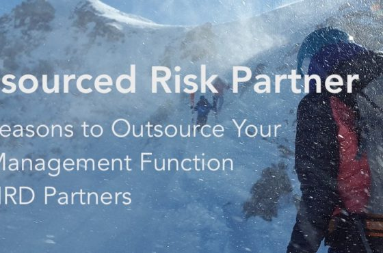outsourced risk partner